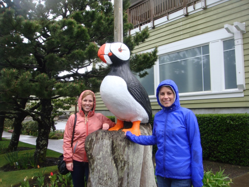 The only puffin we saw