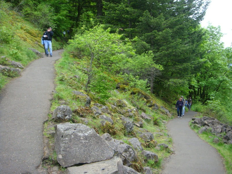 The switchbacks on the trail