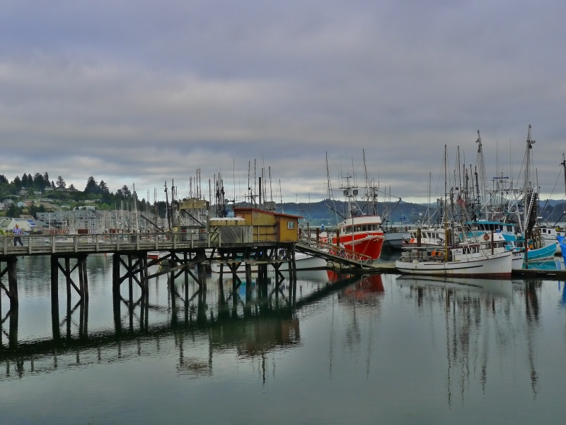 Fishing boats in the Newport bay area