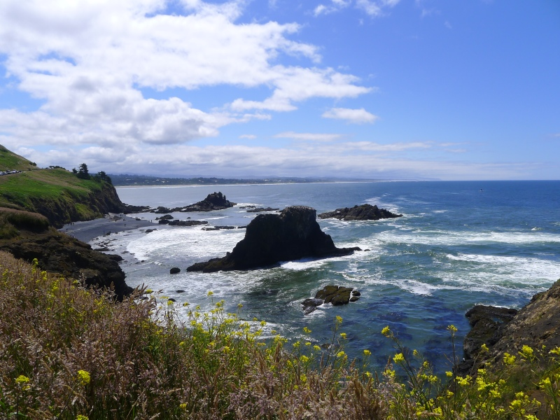 Right next to the Yaquina Lighthouse in Newport