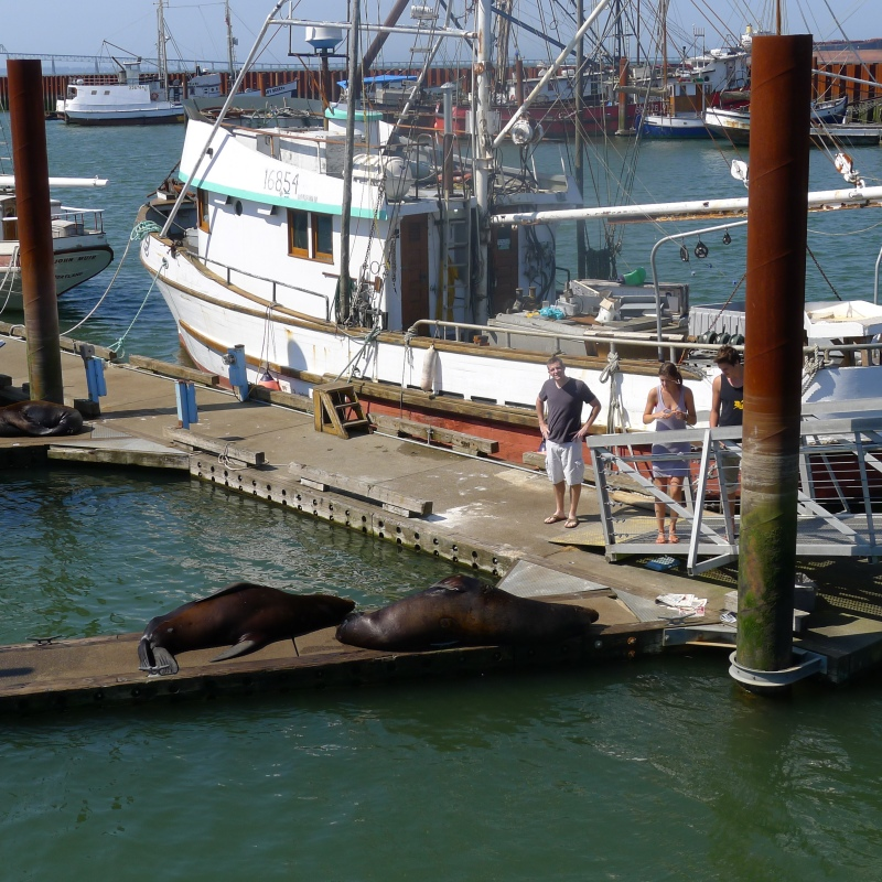 Cory getting close to the sea lions