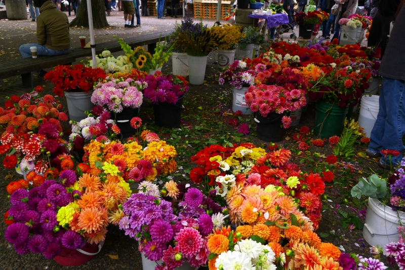 A bounty of flowers at Portland Farmers Market