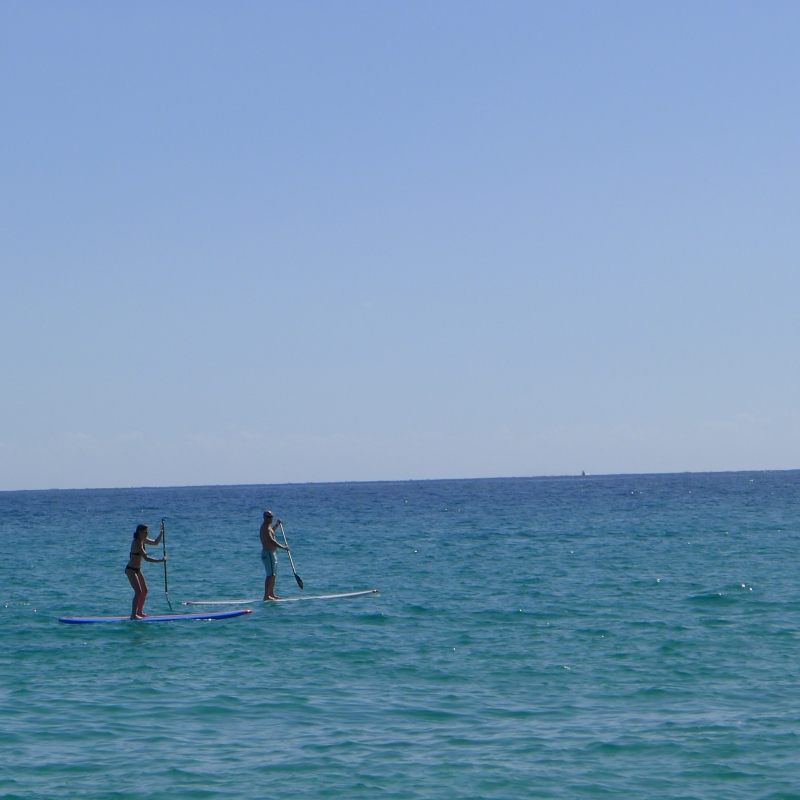 Amy and Rob paddle-boarding in the Sea of Cortez