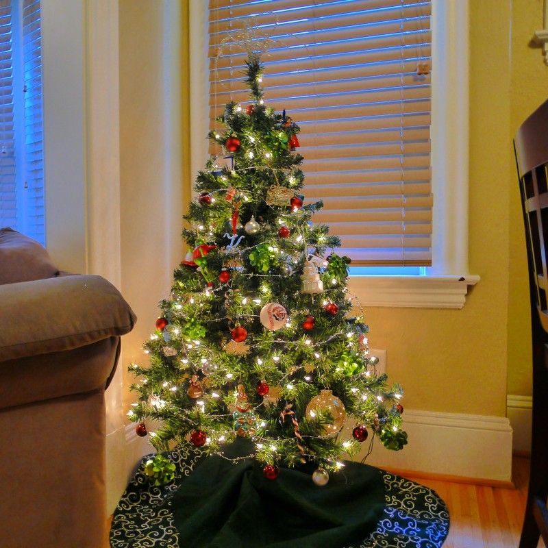 Our little Christmas tree! (Poor Cooper had his bed space stolen.)