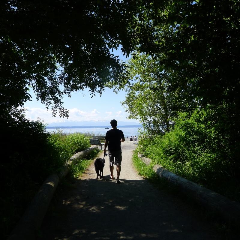 Roaming around the Golden Gardens park, located in Ballard on Puget Sound