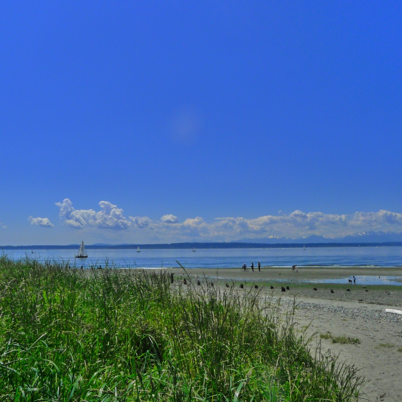Beautiful day at the tip of Golden Gardens park