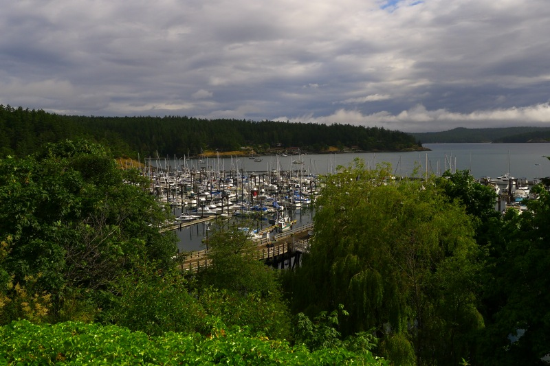 Friday Harbor!