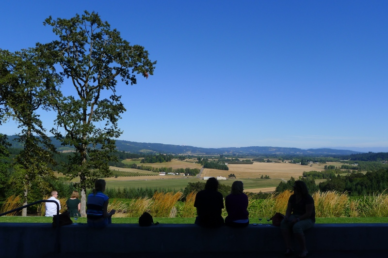 Ridiculous views of the rolling Newberg hills from the Penner Ash patio