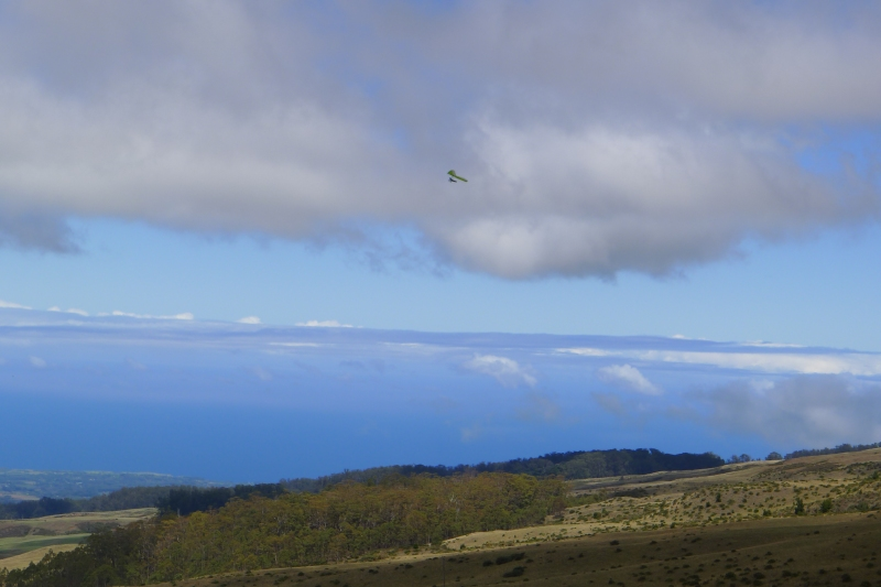 Hang glider sailing down Haleakalā
