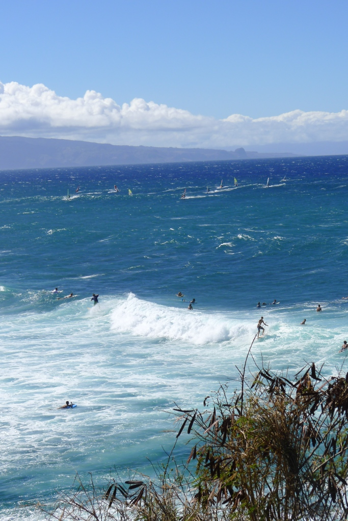 Surfers and windsurfers galore!