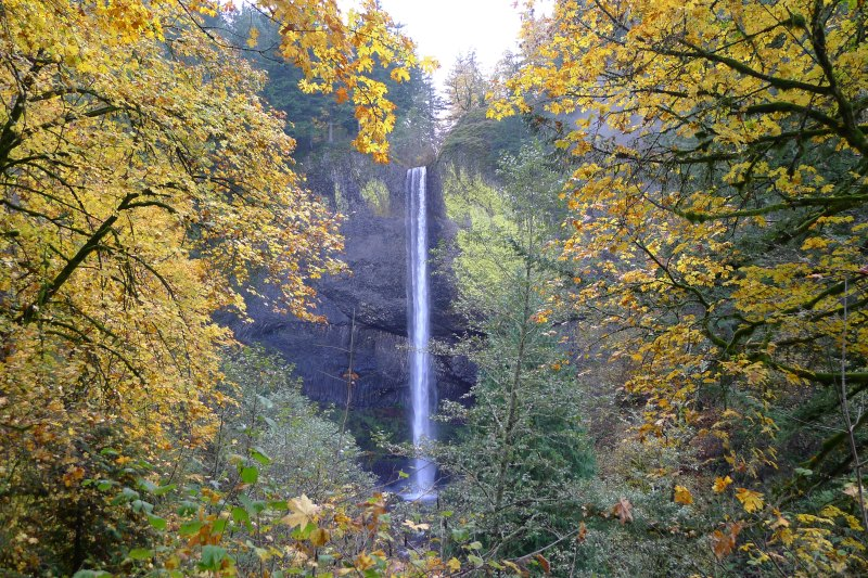 The 249-foot plunge of the Latourell Falls