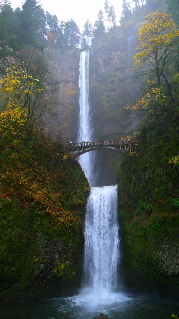 Our old friend, the Multnomah Falls