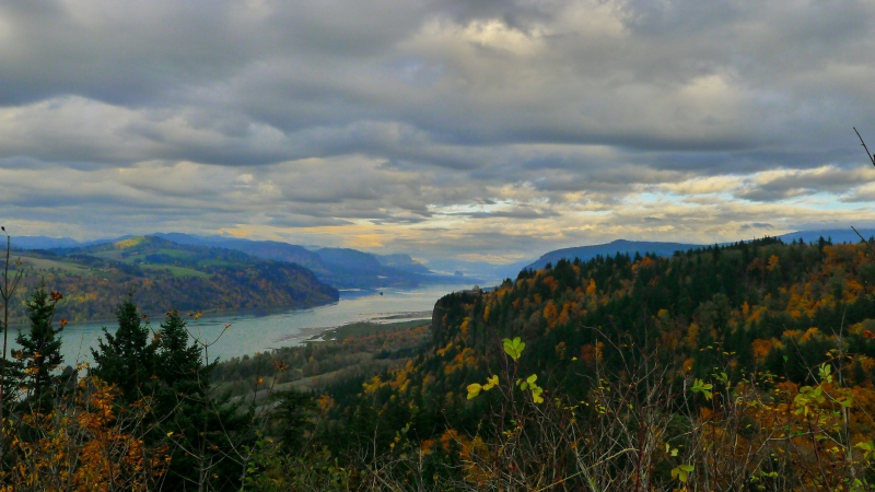 Amazing views of the Columbia River Gorge from Chanticleer Point, aka Portland Women's Forum State Scenic Viewpoint