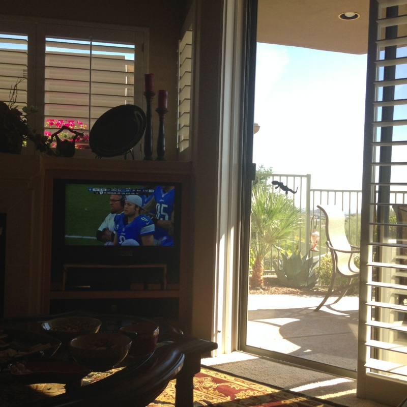 My vantage point during the Lions/Texans Thanksgiving Day game. Ah.