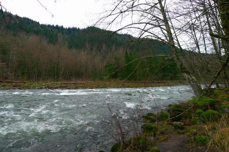 The Sandy River rushing by