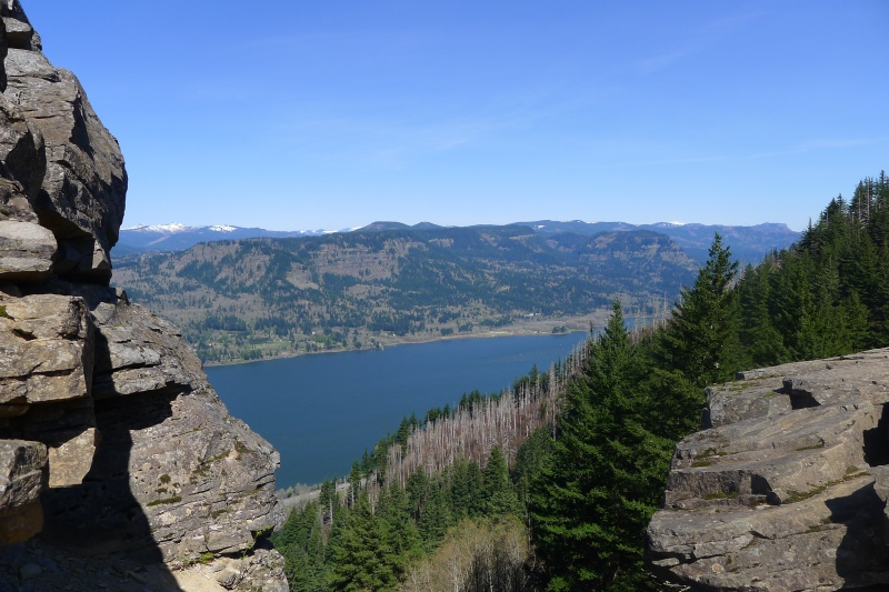 The gorgeous Columbia River Gorge