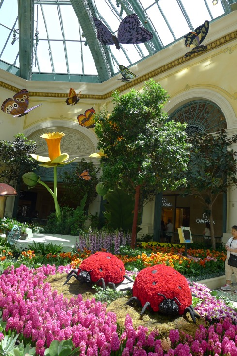 Wandering through the botanical gardens at Bellagio