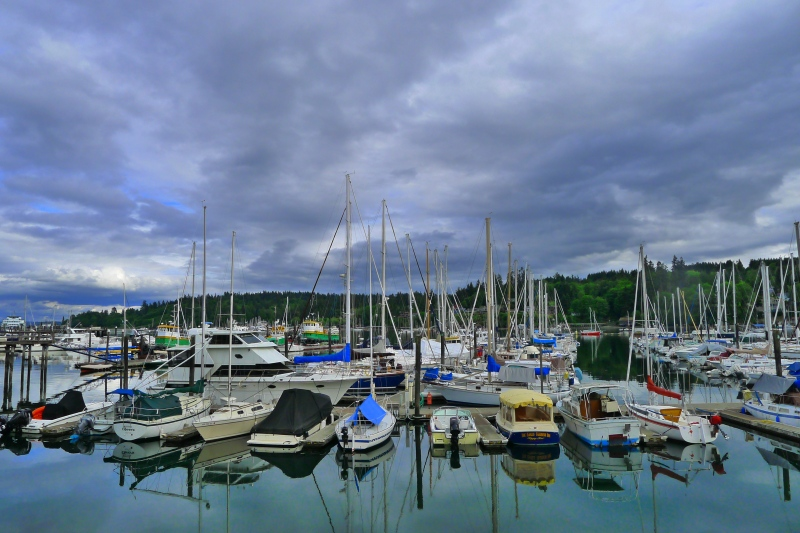 Marina at Bainbridge Island