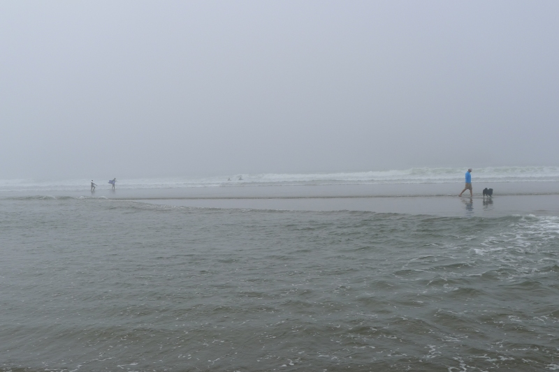 Jeff and Cooper playing in the misty surf