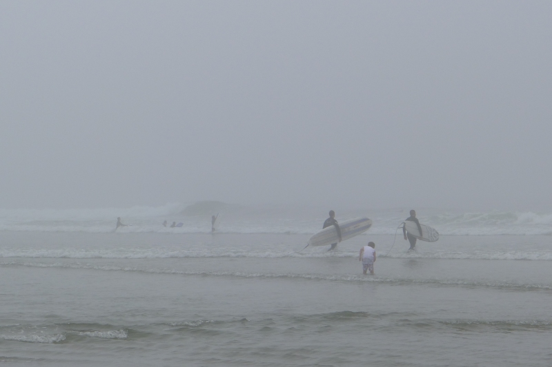 Surfers and kids braving the chilly ocean water