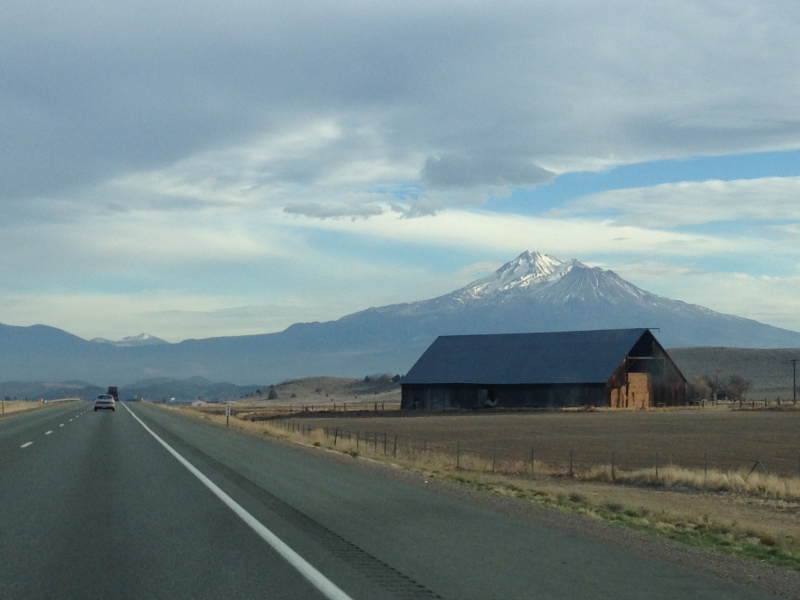 Mount Shasta jutting out of the landscape