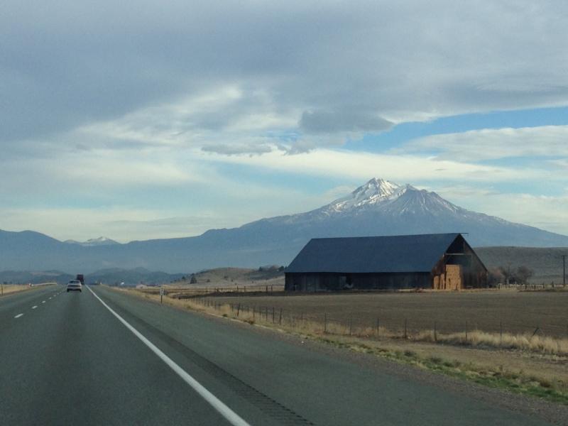 Mount Shasta jutting out of the landscape