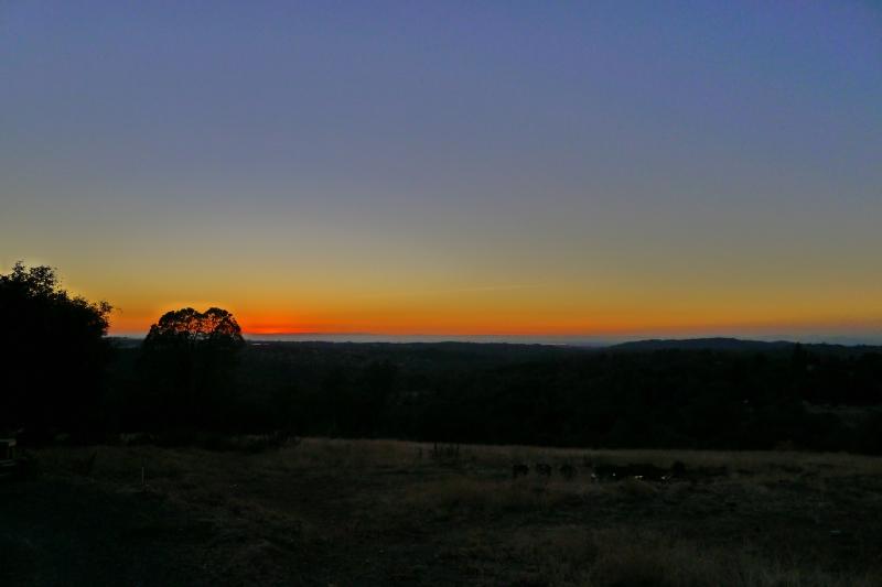 Sunset on our last night in Auburn