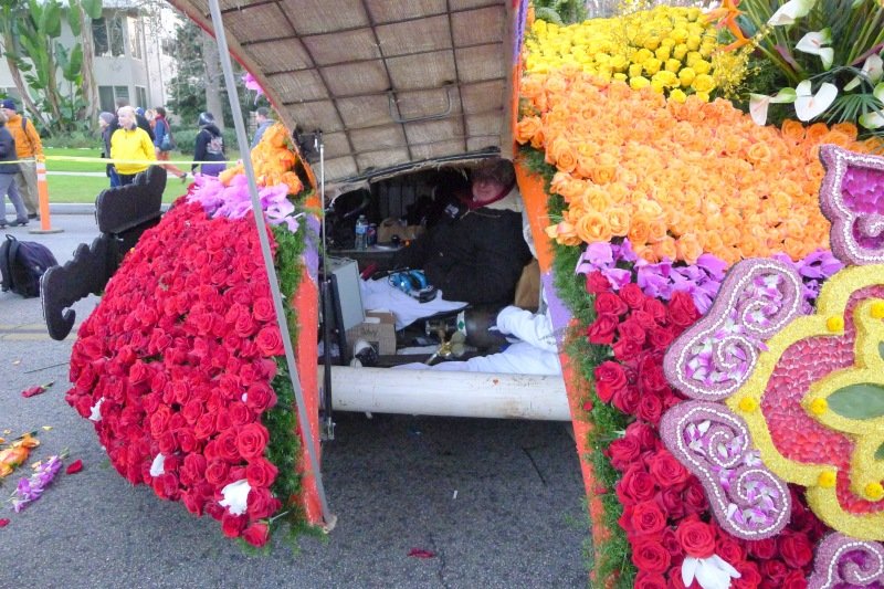 "A peek ""under the hood"" at a Rose Parade float - there were three people under there!"