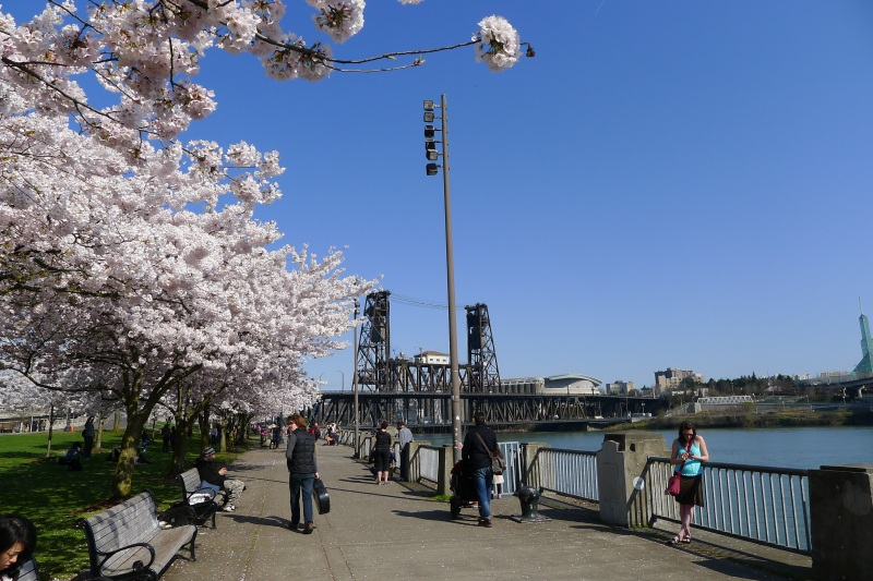 The esplanade along Willamette River